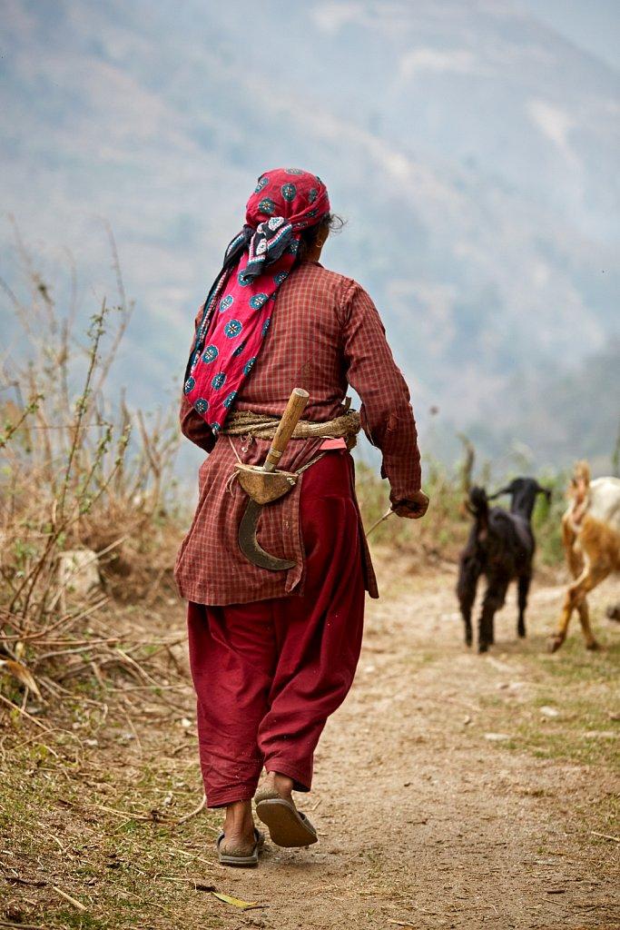 Nepal-2018-H8A7931-258.jpg